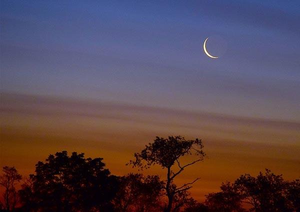 Вечером синим, вечером лунным Анализ стихотворения